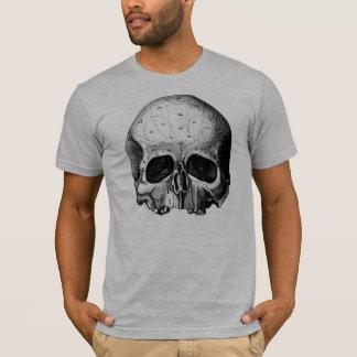 Camiseta meio crânio