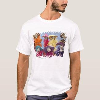 Camiseta México. Catrinas esqueletal, figuras que comemoram