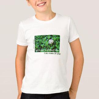 Camiseta Mint me um dia perfeito/mim vieram jogar