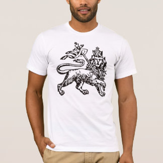 Camiseta MoAnbesa