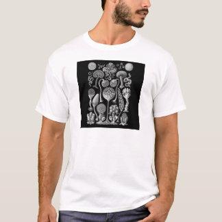 Camiseta Moldes de limo em preto e branco