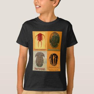 Camiseta Montagem de Trilobite de quatro fósseis