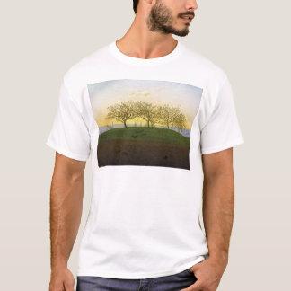 Camiseta Monte e campo arado perto de Dresden