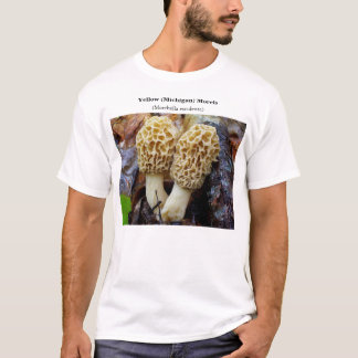 Camiseta Morels do amarelo (Michigan)