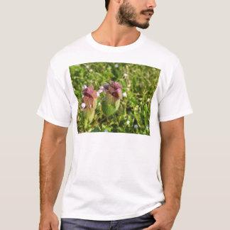 Camiseta Morto-provocação roxa (purpureum do Lamium) no