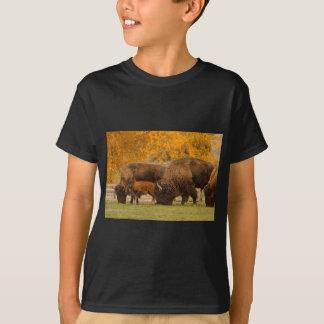 Camiseta Nação da família do bisonte
