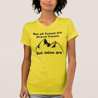 Camiseta Não todo o Tetons é Tetons grande, Bu…