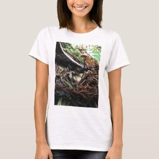 Camiseta Não tropece o cogumelo