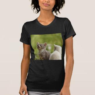 Camiseta Natureza animal desorganizada curiosa animal nova