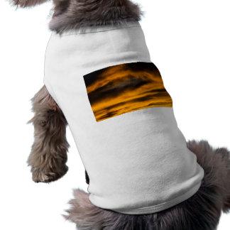 Camiseta neutralização da águia