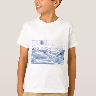 Camiseta Neve em um prado no macro do inverno