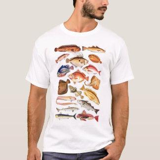 Camiseta newartsweb - tão muitos peixes, tão pouca hora