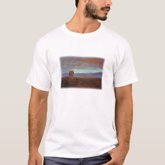 Camiseta 'Ngorongoro Sunset