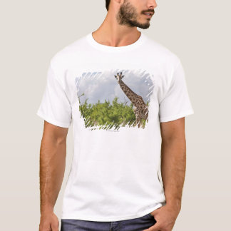 Camiseta No safari em Tanzânia, África. 2