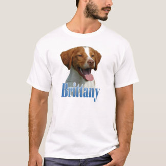 Camiseta Nome de Brittany
