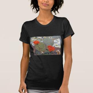 Camiseta O cacto aumentou