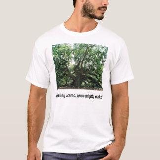 Camiseta o carvalho do anjo, das bolotas minúsculas, cresce