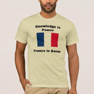Camiseta O conhecimento é bandeira do poder