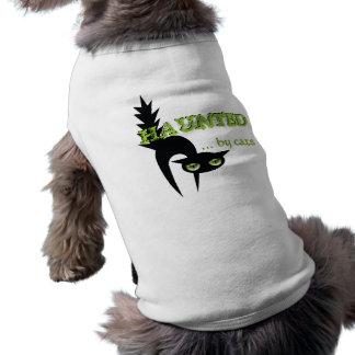 Camiseta O Dia das Bruxas assombrou por gatos