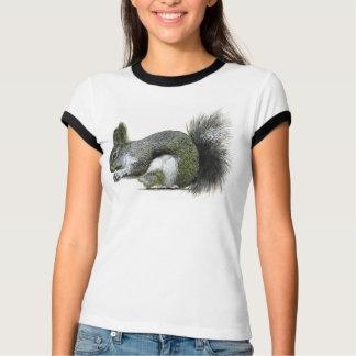 Camiseta O esquilo de Albert