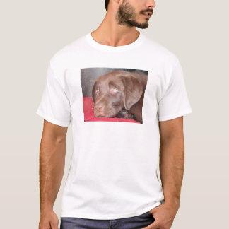 Camiseta O filhote de cachorro de Labrador do chocolate