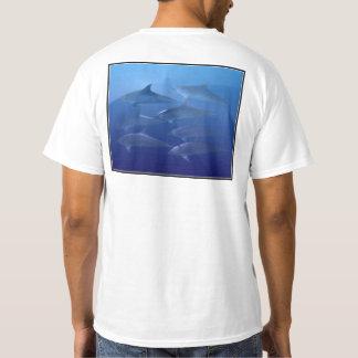 Camiseta O golfinho