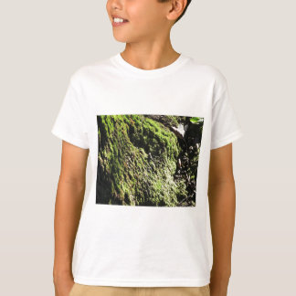 Camiseta O musgo verde no detalhe da natureza de musgo