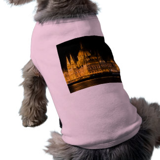 Camiseta O parlamento de Budapest na noite