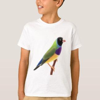 Camiseta O preto enfrentou o passarinho de Gouldian