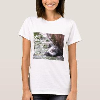 Camiseta O sono macio do gato agacha-se no assoalho