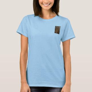Camiseta O T secreto do calipso