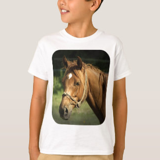 Camiseta O t-shirt das crianças do pônei da castanha