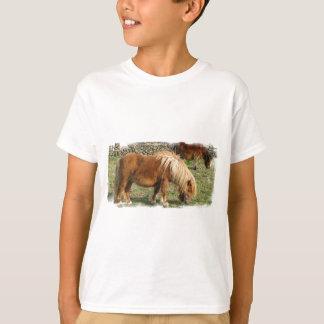 Camiseta O t-shirt desgrenhado do miúdo do pônei de