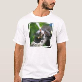 Camiseta O t-shirt dos homens de noz do esquilo