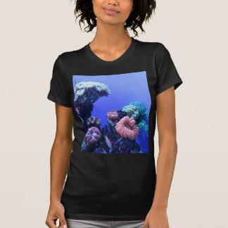 Camiseta ocean_one