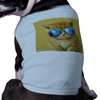 Camiseta Óculos de sol do gato - amor do gato - animal de