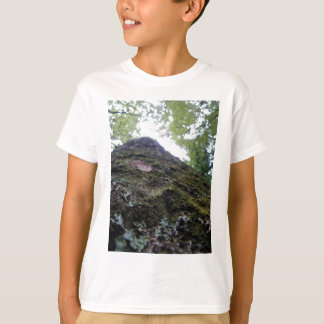 Camiseta Olhando acima o Kauri