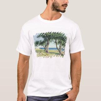 Camiseta Oliveiras velhas, Bordighera