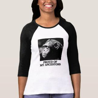 Camiseta Orgulhoso de meus antepassados - evolução - -