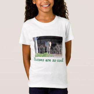 Camiseta Os cavalos são assim que esfrie!