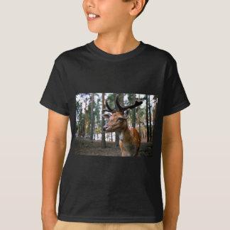 Camiseta Os cervos de Brown aproximam árvores