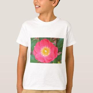 Camiseta Os salmões da velha escola coloriram cor-de-rosa