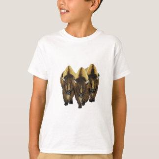 Camiseta Os três amigo
