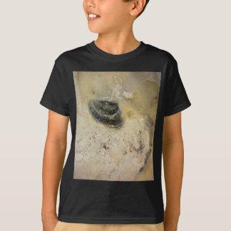 Camiseta Ostras