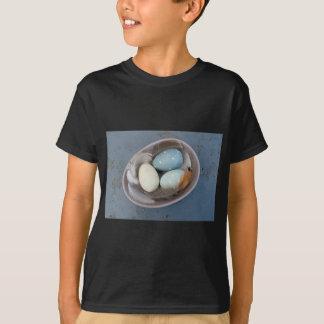 Camiseta Ovos e penas