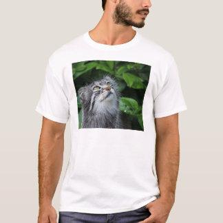 Camiseta pallas-gato