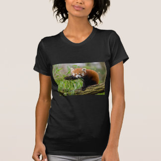 Camiseta Panda vermelha que come a folha verde