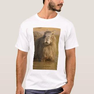 Camiseta Pantanal, Brasil, Capybara, Hydrochoerus