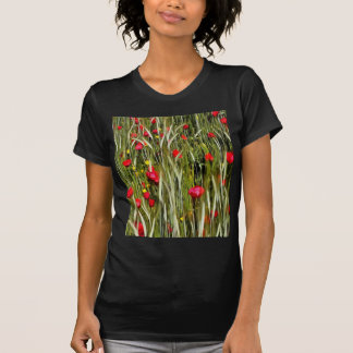 Camiseta Papoilas vermelhas em um campo de milho