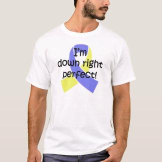 Camiseta Para baixo direito aperfeiçoe, consciência de